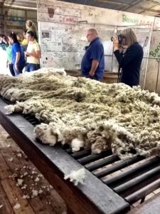 Fleece on the table